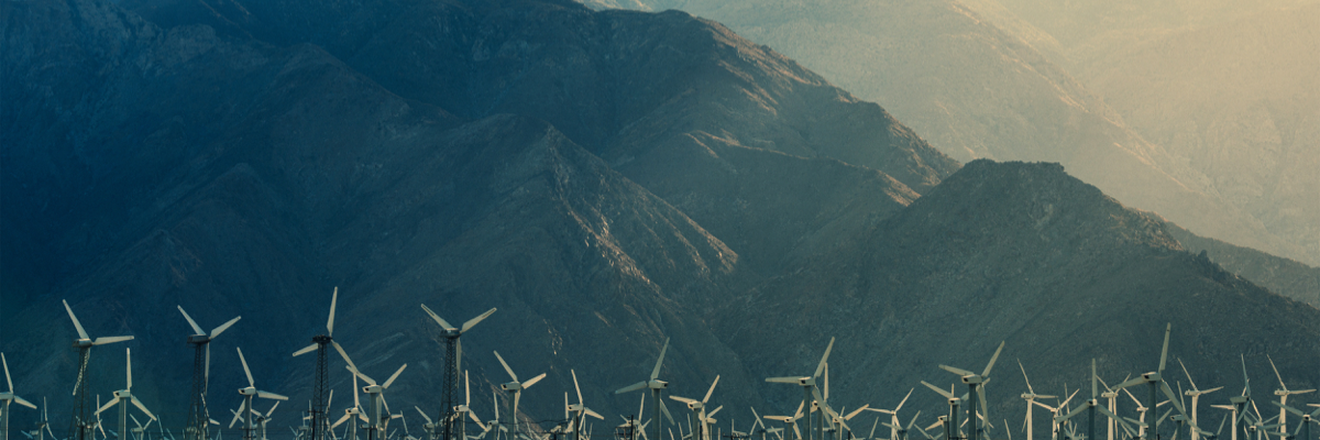 Leveraging Big Data for Sustainability Leadership